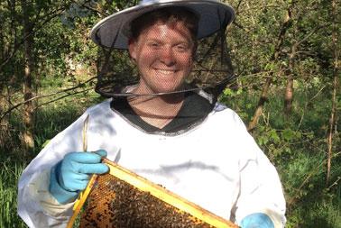 Honig aus eigener Imkerei kaufen