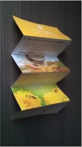 Nachhaltig produzierter Produktflyer
